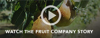 Watch The Fruit Company Story