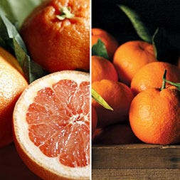 Red Grapefruit and Satsuma Mandarins
