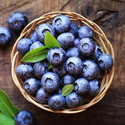 Mountain Blueberries
